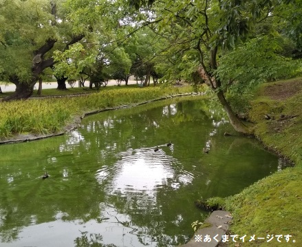 ◇自然体験型園庭を施工中!◇